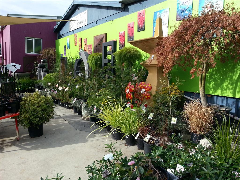 Howrah nursery and garden centre hobart tasmania for Garden design hobart