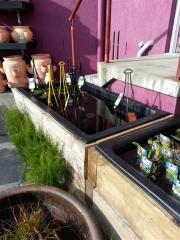 Howrah Nursery Plants (52)
