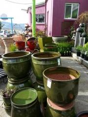 Howrah Nursery Garden Pots, tools and accessories (11)