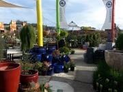 Howrah Nursery Garden Pots, tools and accessories (13)
