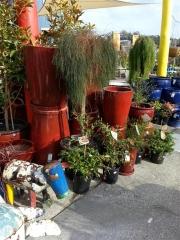 Howrah Nursery Garden Pots, tools and accessories (15)