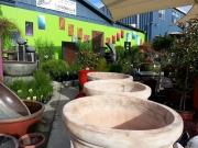Howrah Nursery Garden Pots, tools and accessories (16)